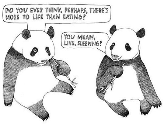 """Two pandas eating bamboo. One asks the other """"Do you ever think there's more to life than eating?"""". The other replies """"You mean, like sleeping?"""""""